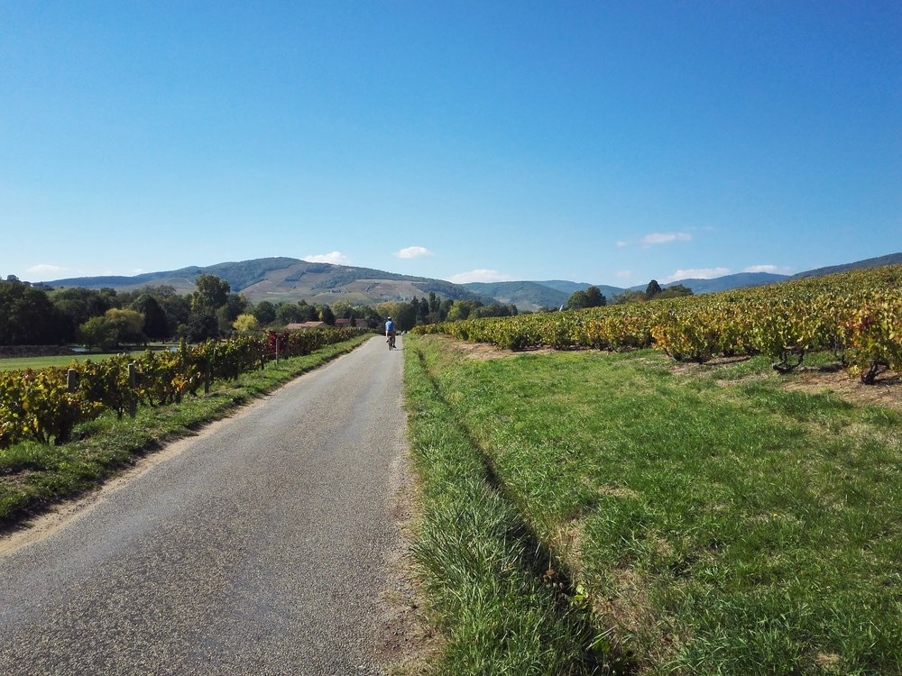 Cycling in the Beaujolais region