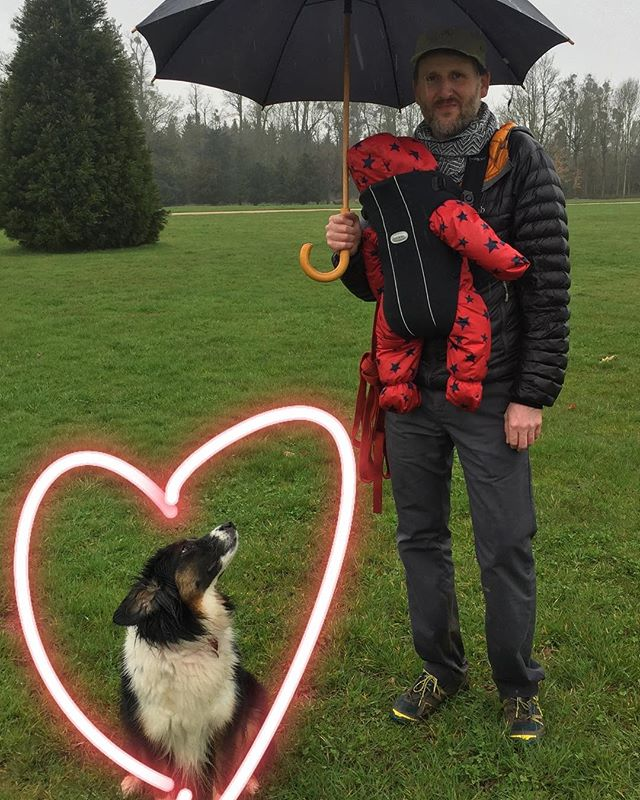 Nearly two years in and still the best thing we picked up in a service station from Bosnia! #nationalpetday #adoptdontshop #dog #dogs #rescuedogsofinstagram #collie