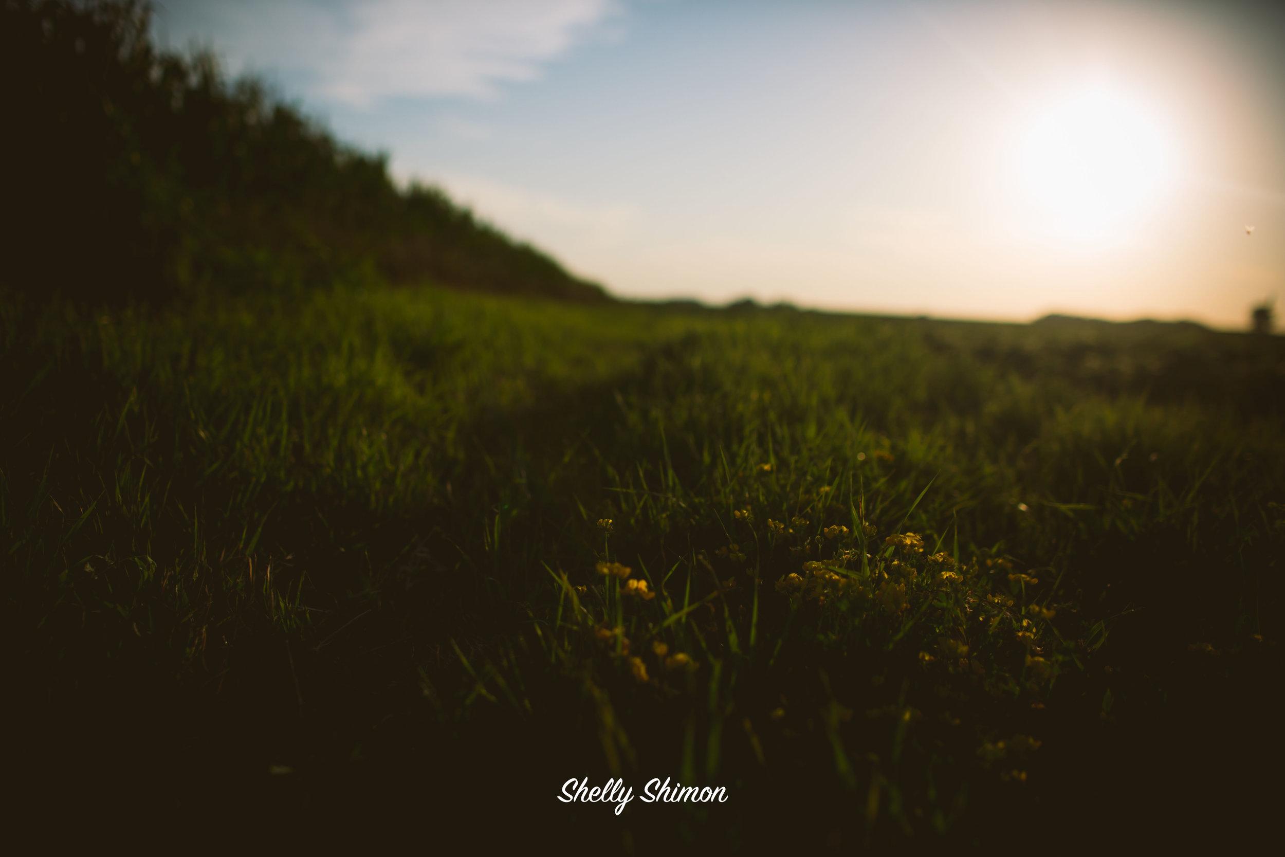 (2015-07-17 20-04-48)Canon Canon EOS 5D Mark III(5760x3840)616011200