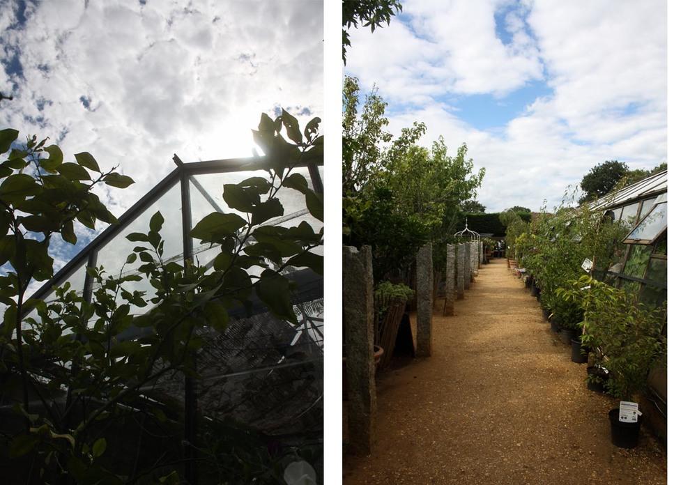 Petersham-Nurseries-Richmond