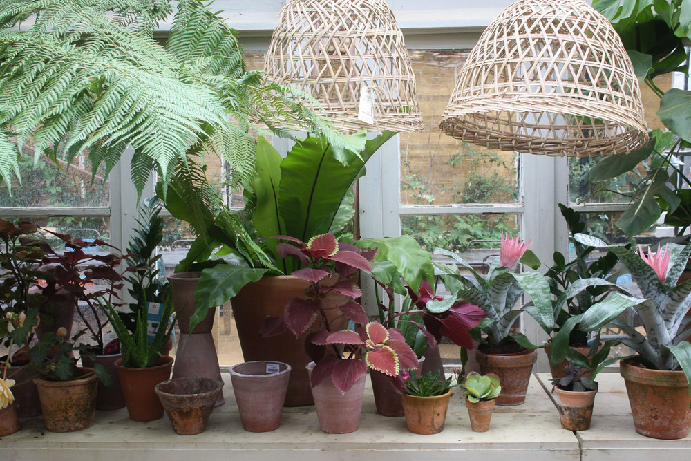 Petersham-Nurseries-Richmond