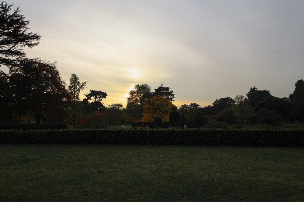Kew_Autumn