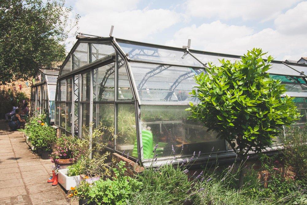 Ravenscourt_glasshouses