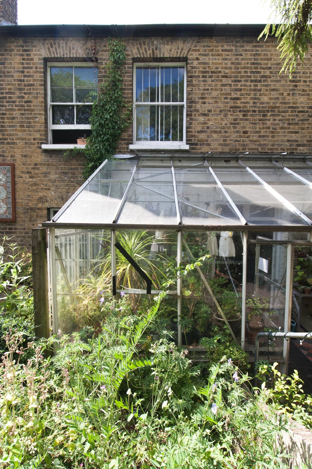 South_London_Botanical_Institute