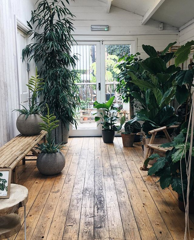 Saturday plant shopping heaven 🌿🙌🏻 no plants bought today however, just a new pot for the ever growing #monstera 👍🏻