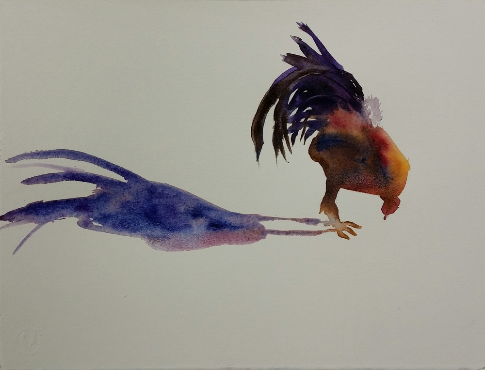 Rooster and Shadow II