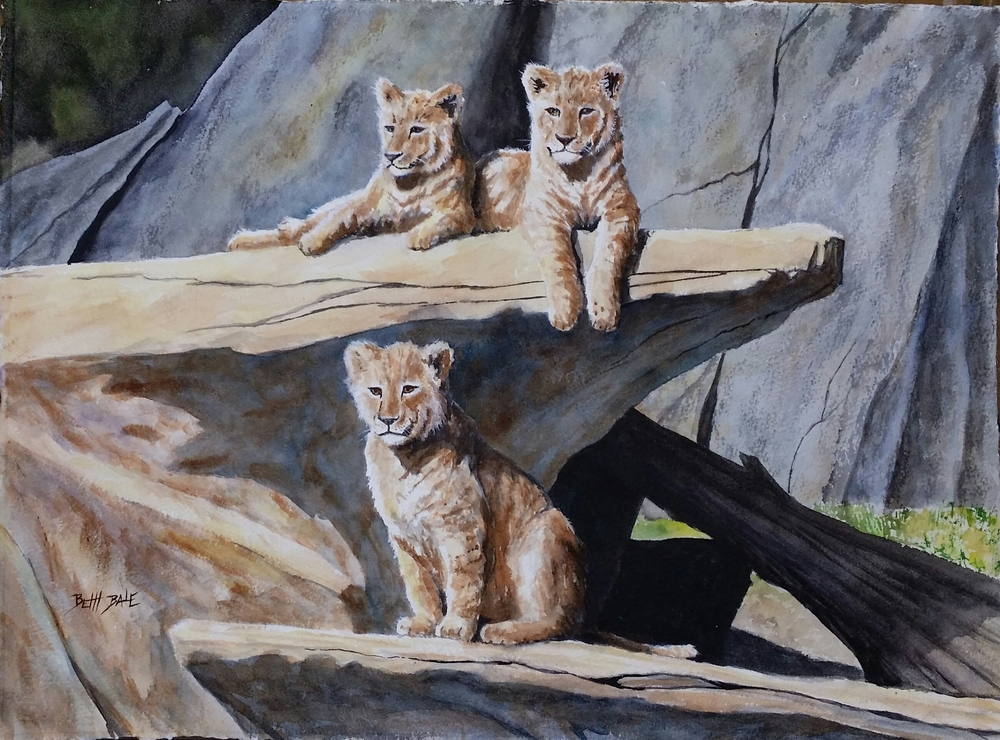 Three Cubs