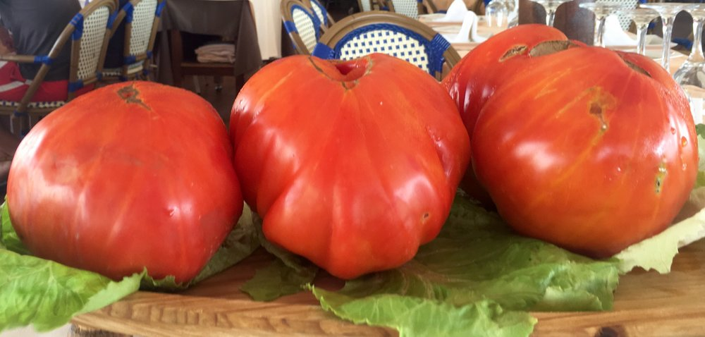 Giant Spanish tomatoes