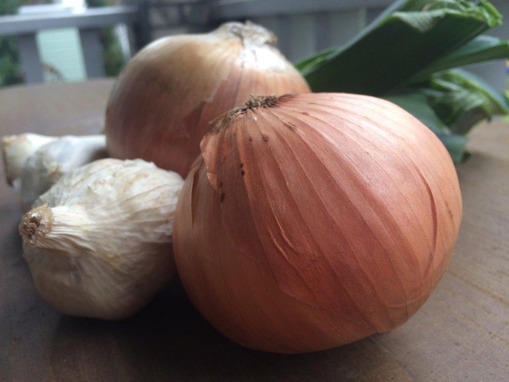 Onions7.jpeg