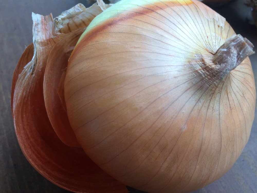 Onion1.jpeg