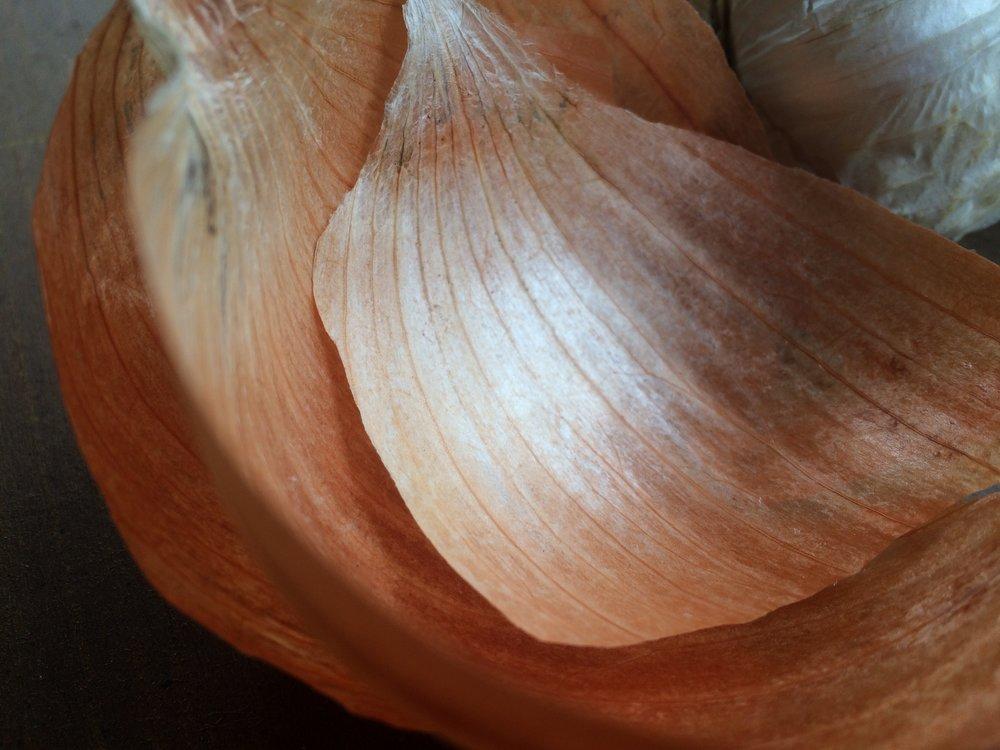 Onion Skins2.jpeg