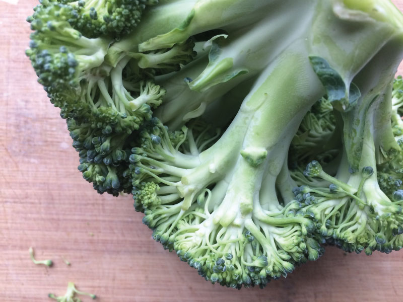 Broccoli2-web.jpg