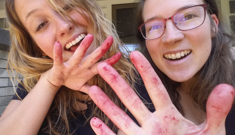 Raspberry-hands-Maddie2-web.jpg