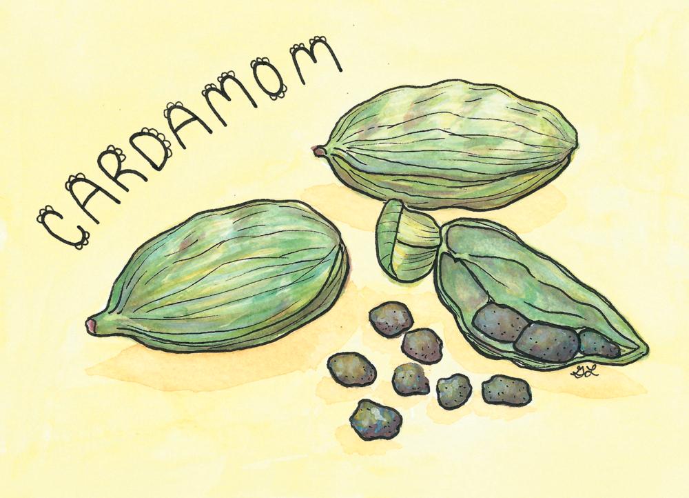 Artboards-25-Cardamom.png