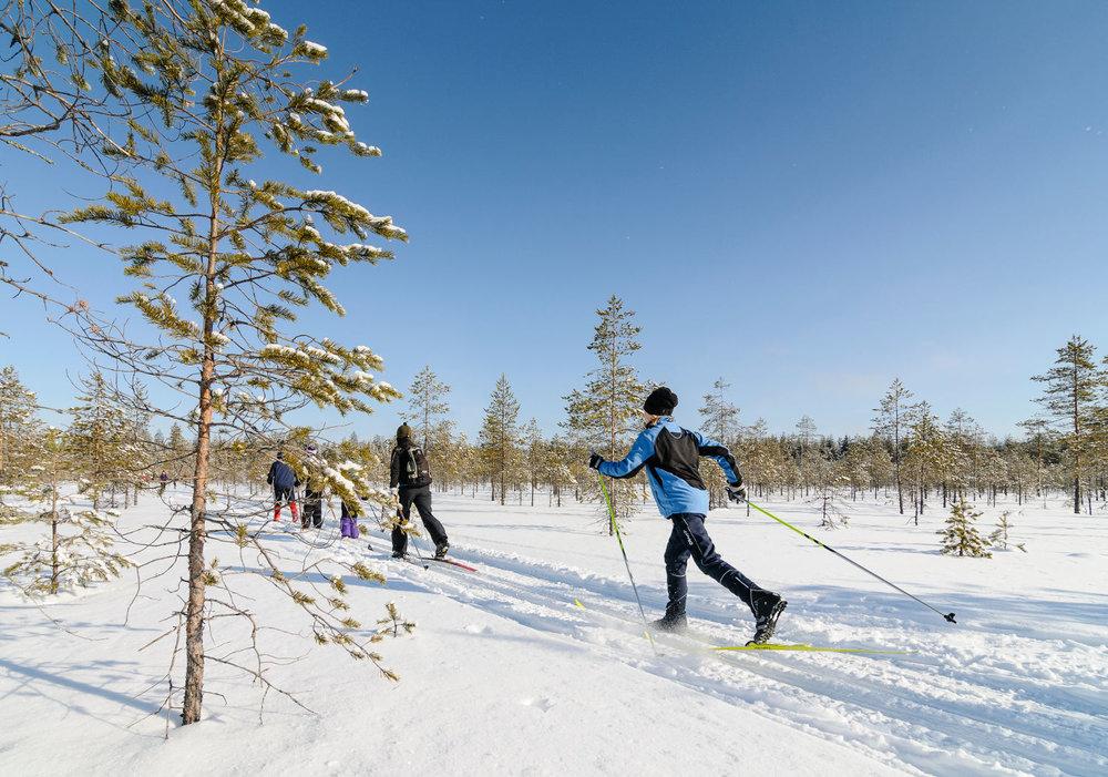 Tiilikkajärven kansallispuisto on pääosin tasaista suomaastoa ja loivia metsäsaarekkeita. Tiilikanjärvi soveltuukin retkikohteeksi niin lapsille ja aikuisille. Kuva kevättalven retkihiihtotapahtumasta (photo: M. Haapalehto/Metsähallitus).