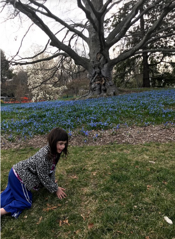 Student exploring the flowers in full bloom at the cemetery entrance.