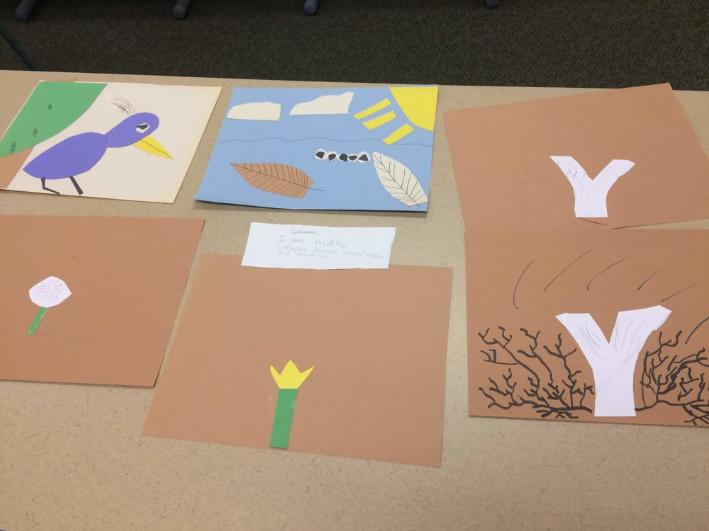 Construction paper collages of animals and plants found at Mt. Auburn