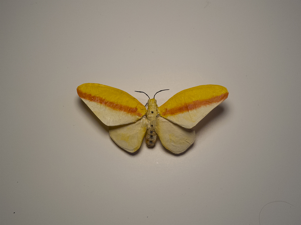 "Moth No. 2/Rothko.  4""x2"", oil on paper, glue, wire.   Another one for the show at Bunnycutlet Gallery, now on view until the 23rd."