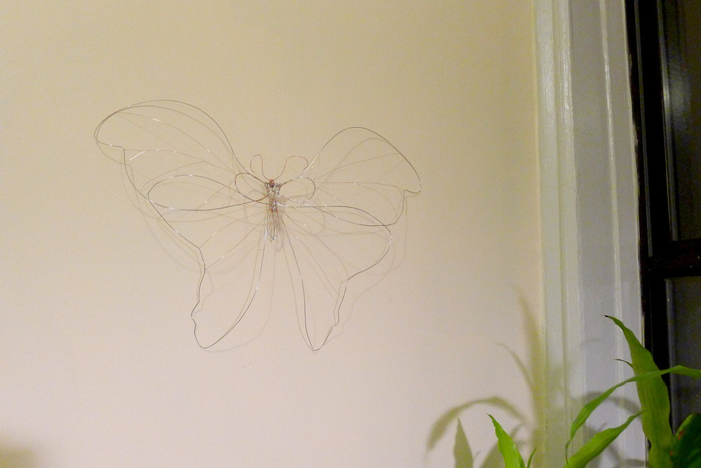 "22"" wireframe for a Doozy moth."