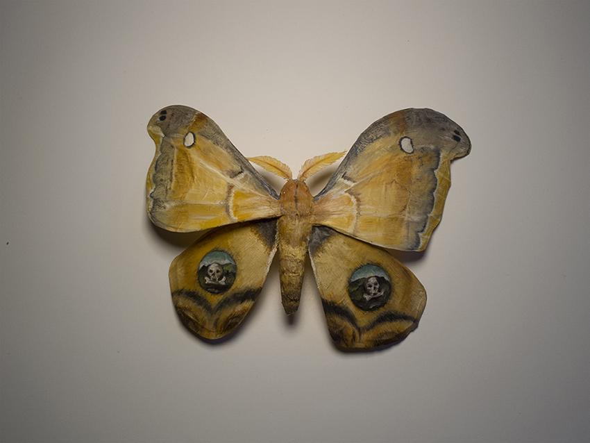 Moth No. 1 / Kahlo