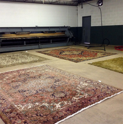 Step 1: Area Rug Cleaning