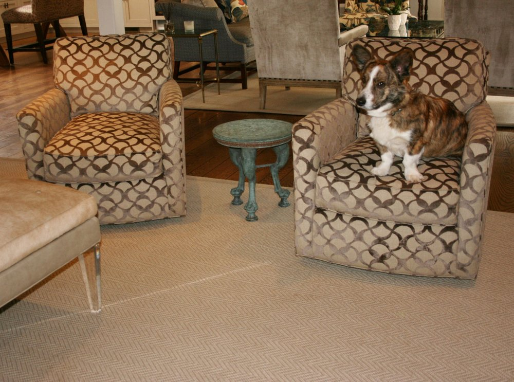These accent chairs look wonderful with the wool herringbone carpet. The adorable dog is a great touch too!
