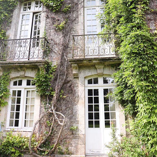 Green romance 🌿💕 Dreaming stay in the Château du Launay 🧚🏻♀️🙌🏼 #traveldiaries#nature#forest#greenlife#yishaiwithlove#green#landscape#lifestyle#slowlife#wanderlust#wellness#fairytail#brittany#blogger#mindfulness#happy#detox#vegan @chateau_du_launay 🙏🏼 @bretagnetourisme 🌿 @morbihantourism 🌸
