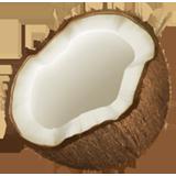 La noix de coco!