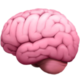 Et la cervelle!