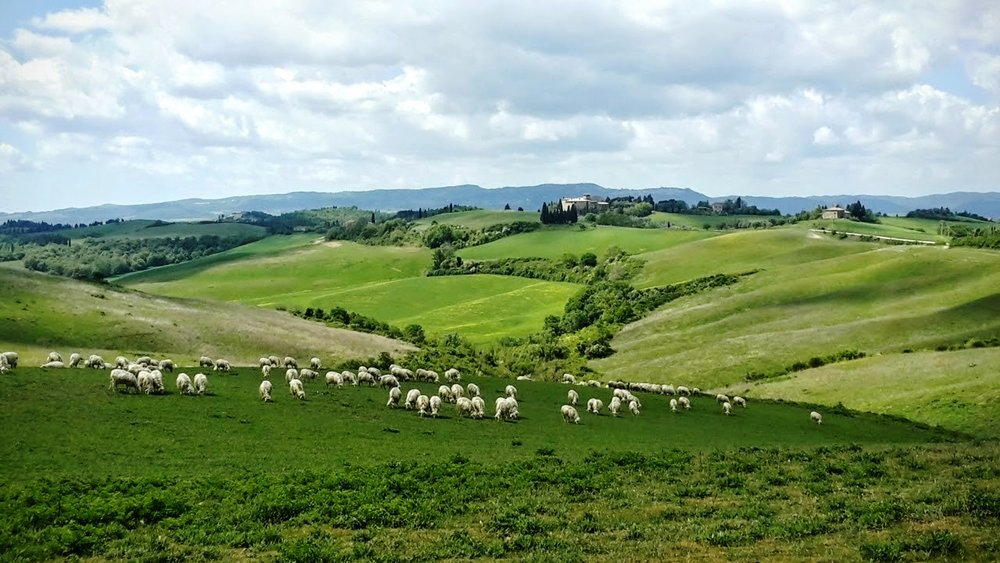 Tuscany Scenery in May 2016