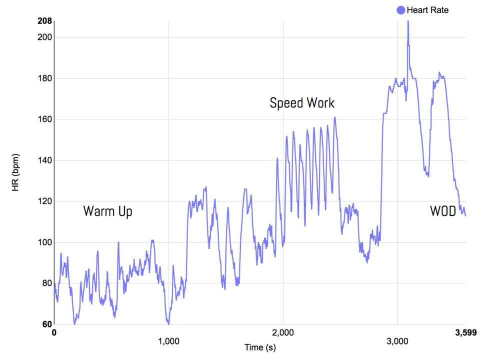 Heart Rate vs. Time During Crossfit Class