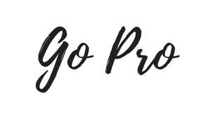 Go Pro Coaching (1).jpg