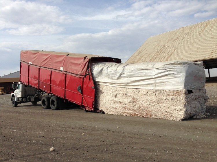 Bulk cotton in transit