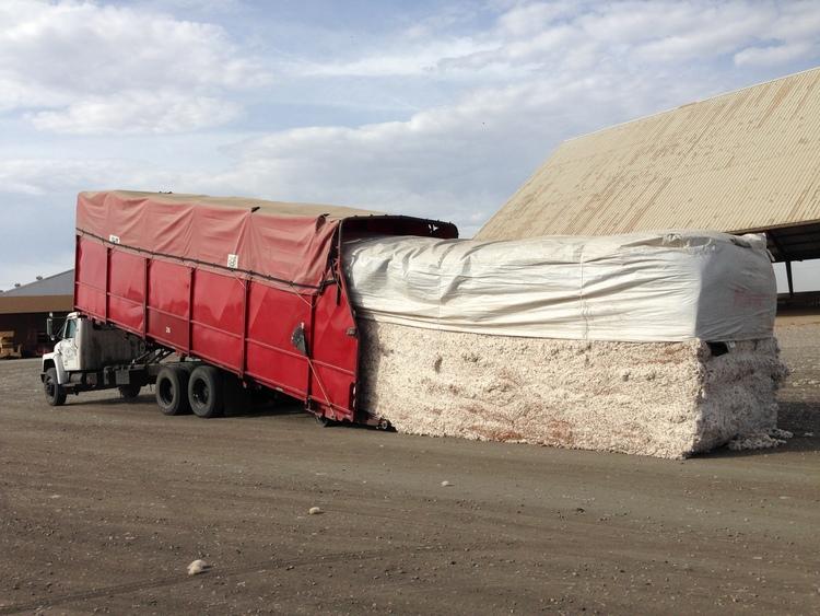 Bulk cotton in transit