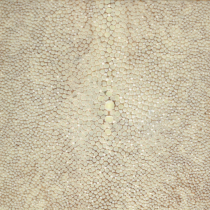 Speckled Oyster Shagreen