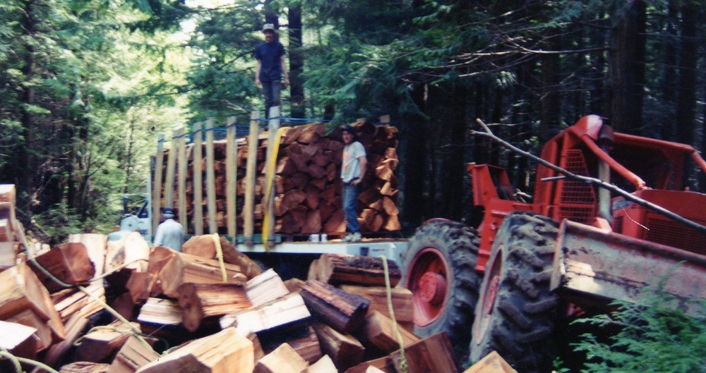 Cutting blocks at Pie Lake in the Sayward Forest District