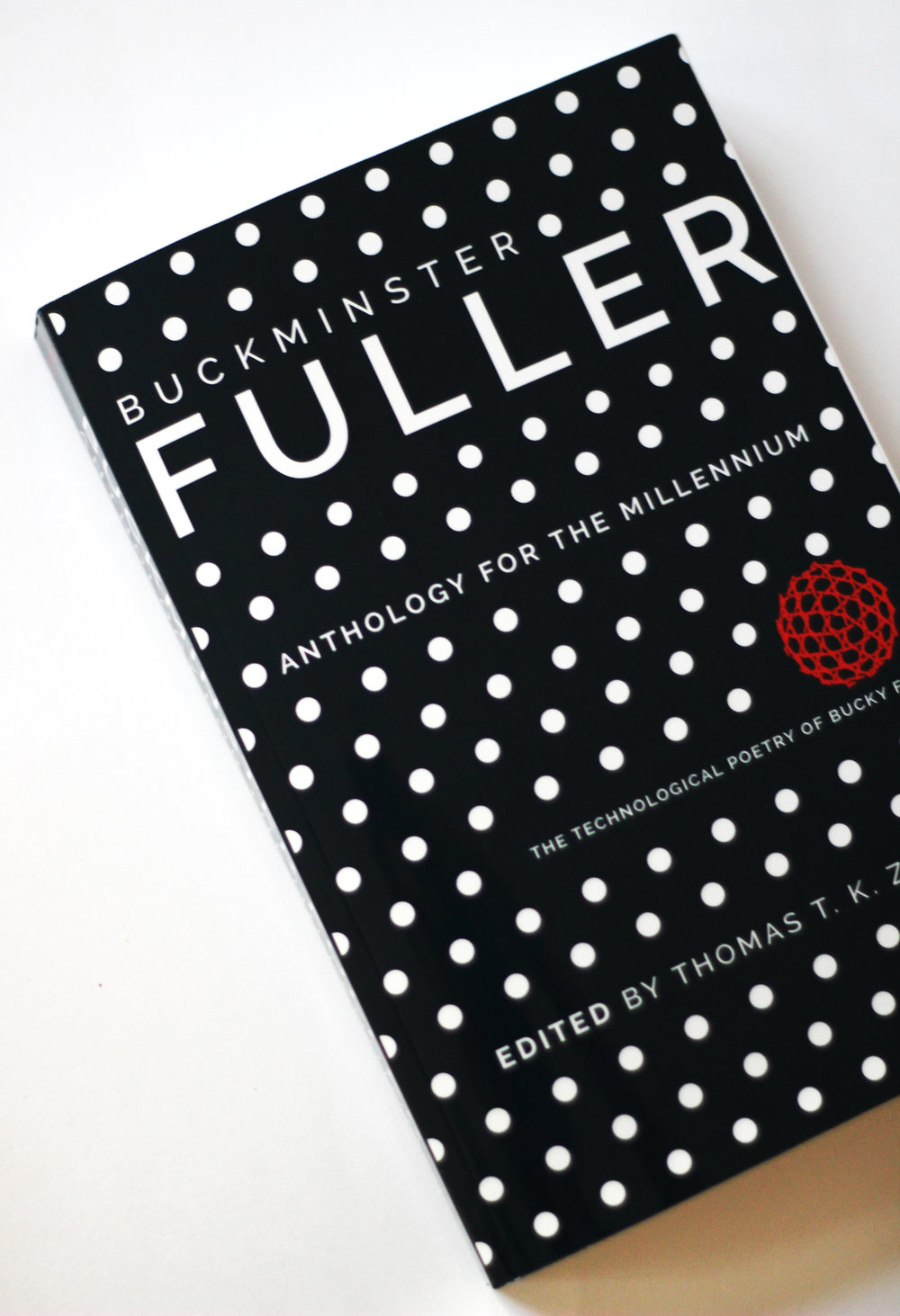 Buckminster Bucky Fuller Book architecture geodesic dome   graphic design book cover