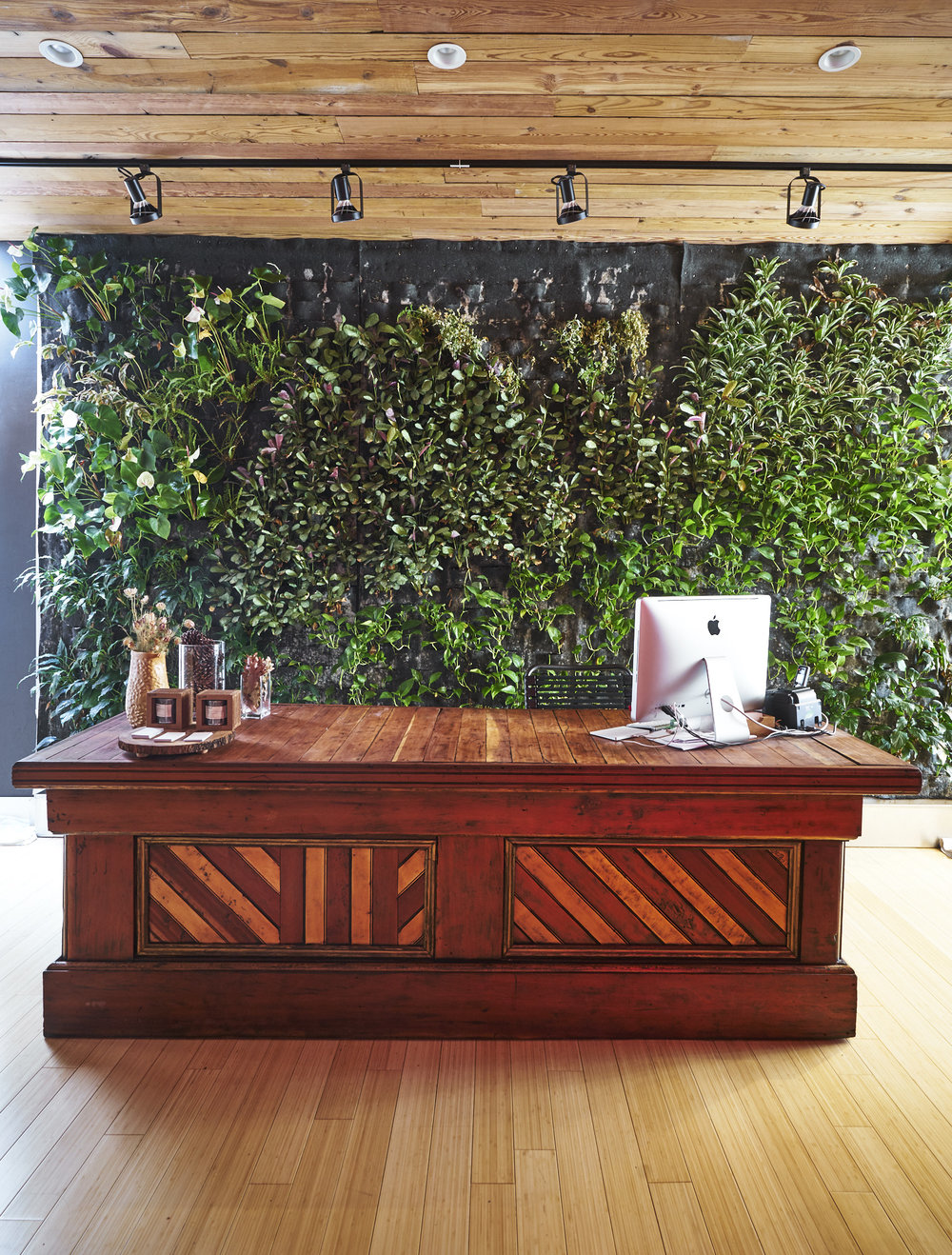 Green wall lobby in workout space and Pilates studio in Chelsea, NY