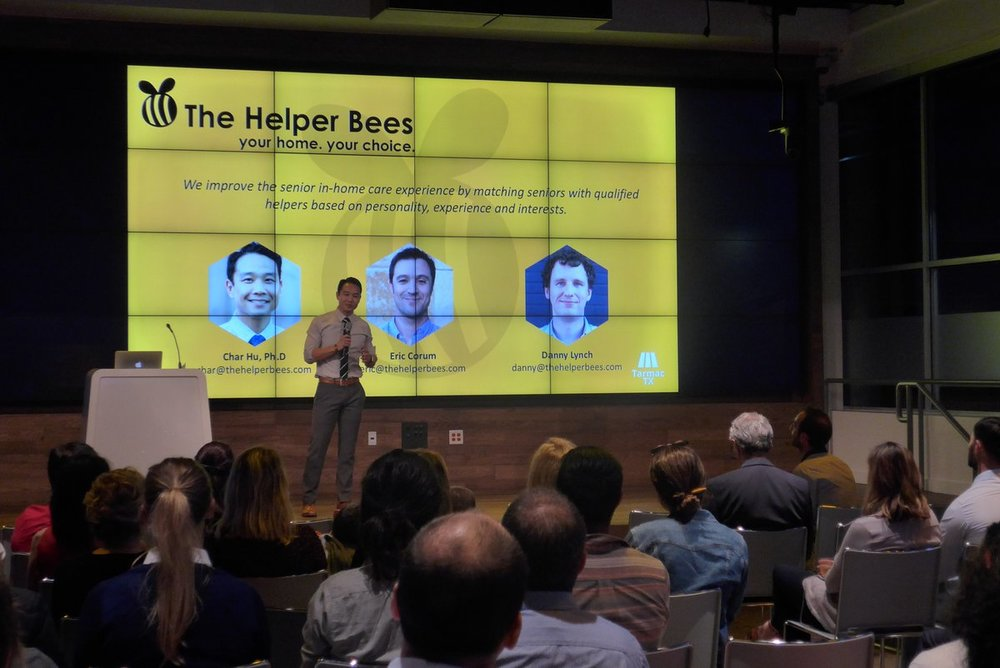 The Helper Bees Pitch