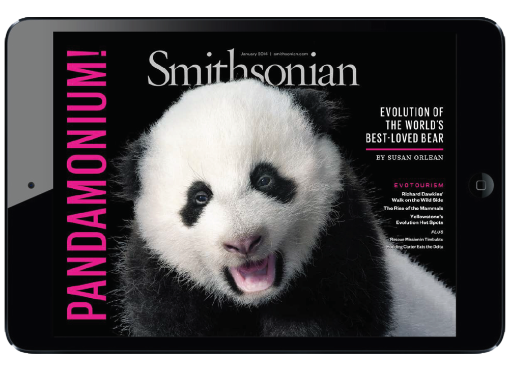 Smithsonian Magazine ipad cover