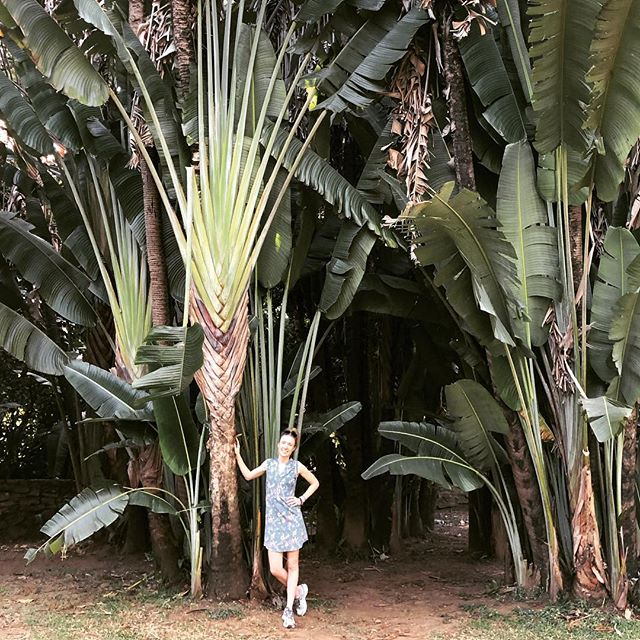 In my nature zone👌🏼🌿🌴 . . . #nature #green #gardensfordays #colombia #medellin #fulltourist #travel #trip #holidays #adventure #selfcare #deepbreaths #exploration #newexperiences