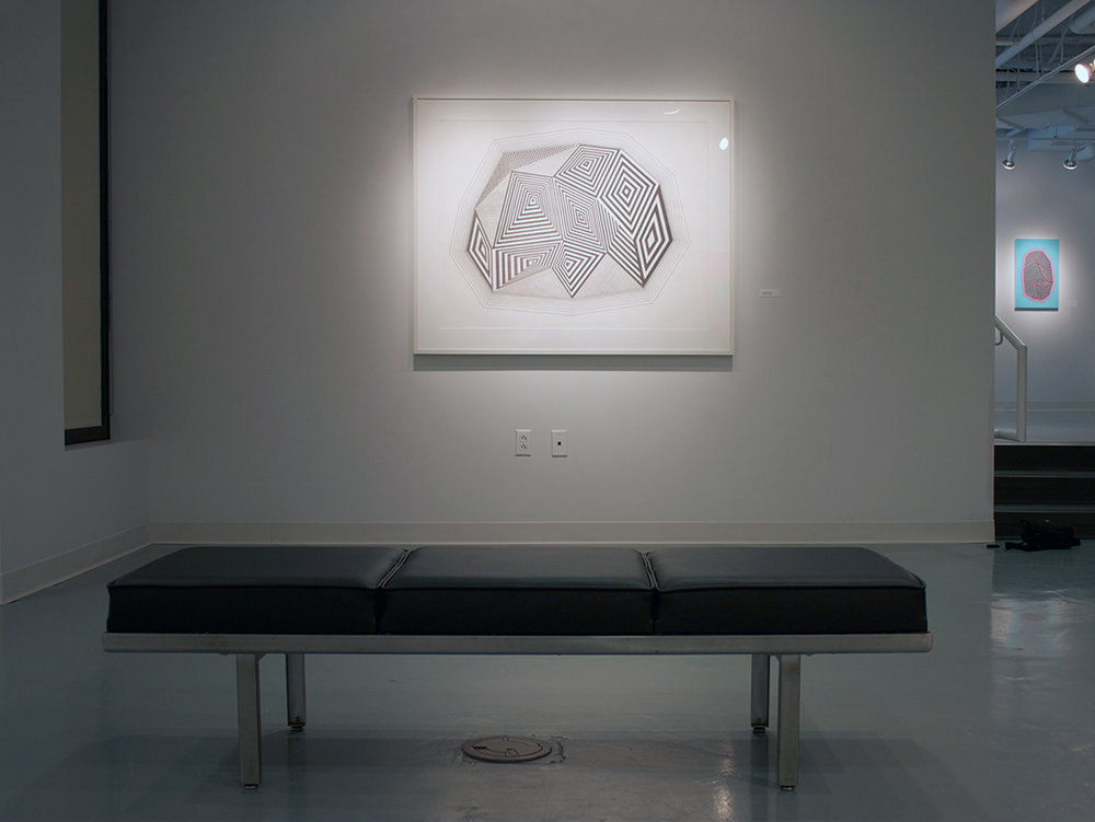 Dowd Gallery   Solo Exhibition   The State University of New York   @ Cortland   2016