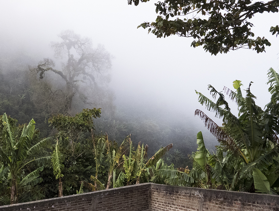 Early morning views from Finca Bella Aurora.
