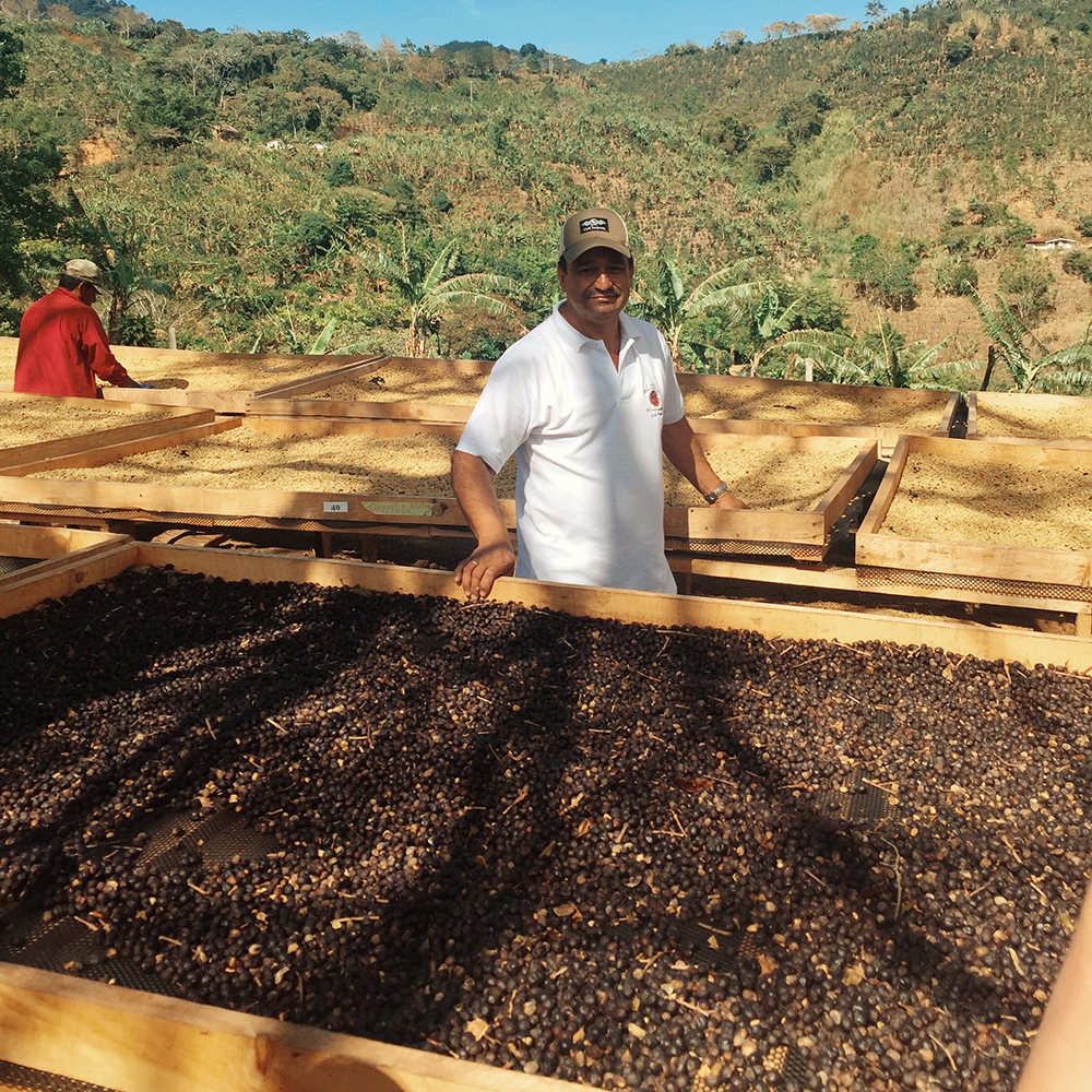 Don Cesar Urena and his coffee at San Isidro de Leon Cortez in Costa Rica
