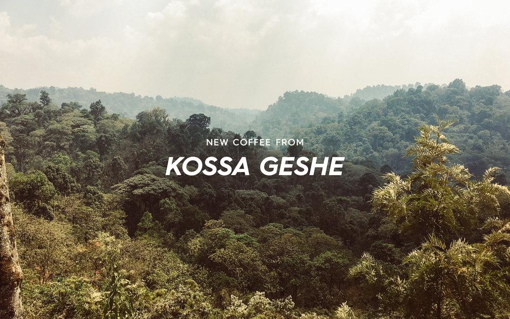 ETHIOPIA _KOSSA GESHE _ROLLOUT_5.28_webbanner3.jpg