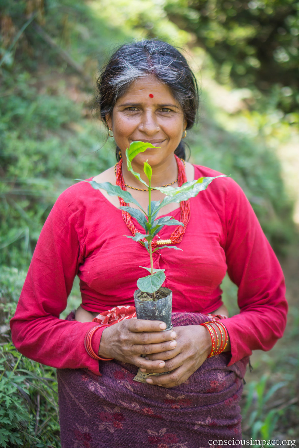 """I'm excited to plant coffee because small worms destroy corn and millet. It is much easier to plant coffee."" - ""Bal Kumari Dahal"