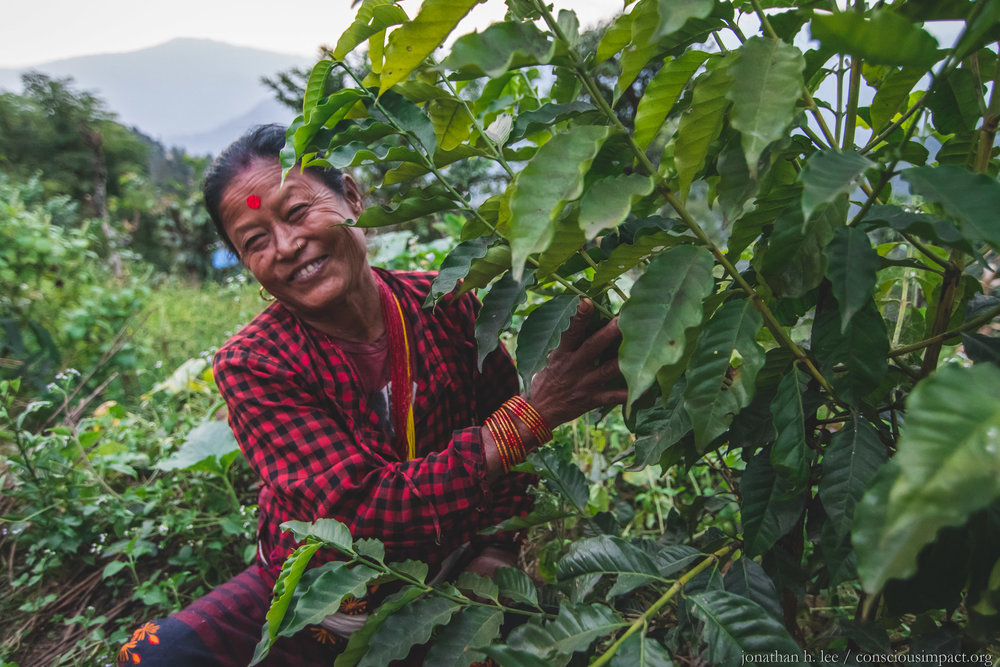 Sano Kanchi Rana Magar is a resident of Takure and one of Nepal's newest coffee farmers. Two years ago, she planted organic coffee saplings from Conscious Impact's greenhouse, and she hopes that this year she will get her first big harvest! Photo by Jonathan H. Lee