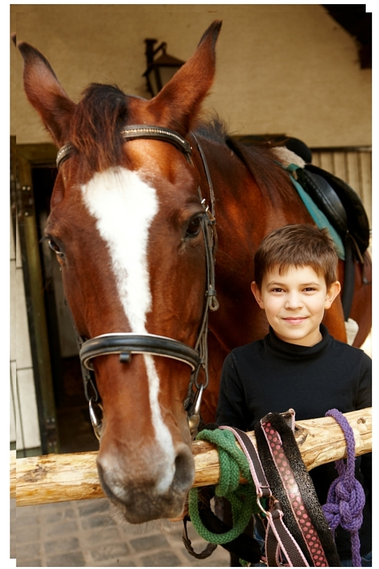 boy and horse canva