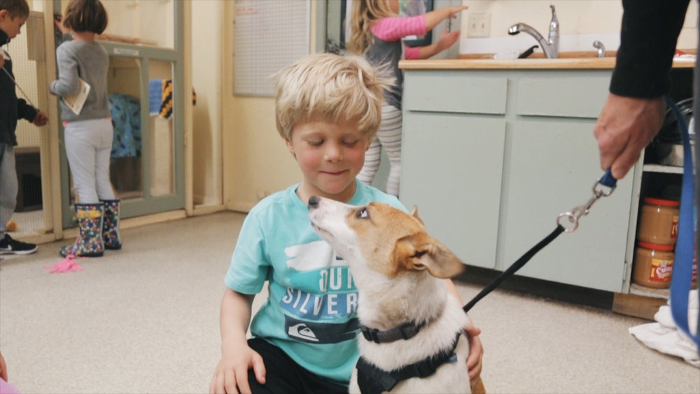 Humane Education - Kids are the leaders of tomorrow. Teaching humane education programs (which include the importance of spaying and neutering pets) is not only fun for the kids - but also sets scene for a more humane future!