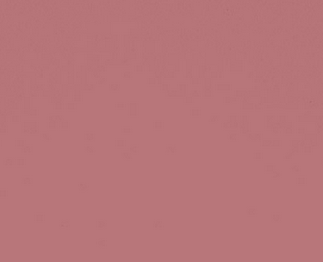 Dusky pink paint by Papet & Paint Company